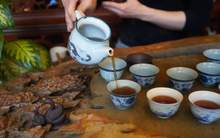 Moychay tea tasting aged ripe puer from the collection of tea culture club puer shu 80 14