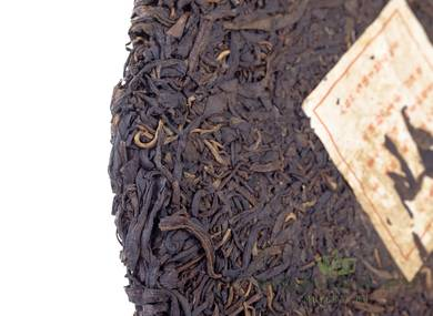 Exclusive Collection Tea Menghai Gushu Sheng Cha 2004 340 gr