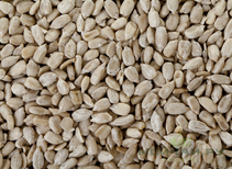 Sunflower seeds cleaned roasted Russia 500 g