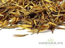 "Red Tea Da Jin Zhen ""Big Golden Pikes"" spring 2018"