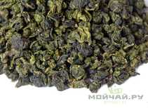 South Fujian Oolongs Te Guan Yin Qing Xiang autumn 2019 from Xiping village