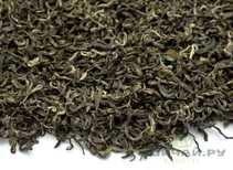 Jun Shan Mao Jian 98 Green Tea