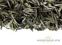 White Tea Wuyi Bai My Dan