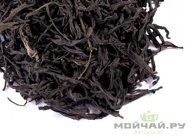 Guangdong Oolongs Сhaozhou Cha Lao Cha Shan Gan Aged oolong