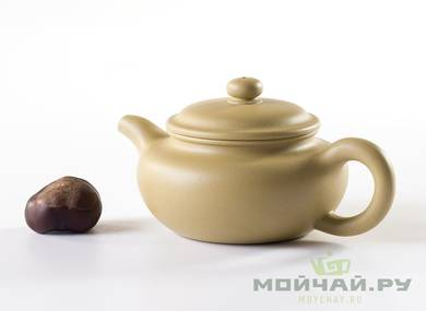 Teapot # 24005 yixing clay 126 ml