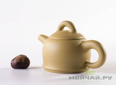 Teapot # 24009 yixing clay 152 ml