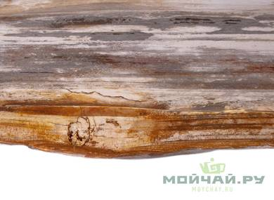 Teatray # 24311  wood petrified tree