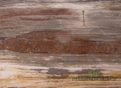 Teatray # 24309  wood petrified tree