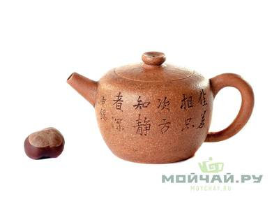Teapot # 24886 yixing clay 292 ml