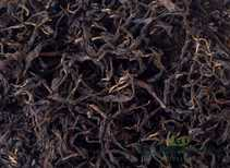 Krasnodar red tea from Hosta organic harvest fall 2019