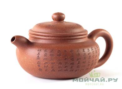 Teapot # 25171 yixing clay 110 ml